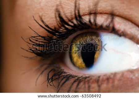 Female eye with cat pupil - stock photo