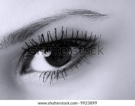female eye with long eyelashes macro, black and white - stock photo