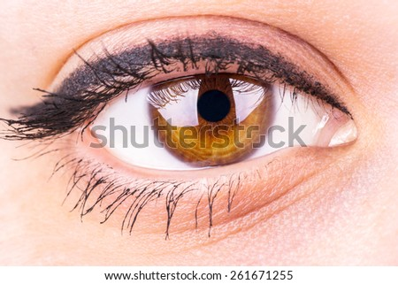 Female eye with makeup closeup