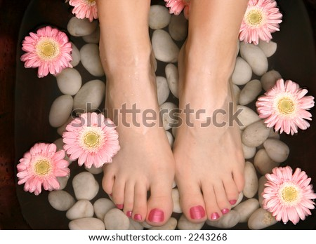 Female feet in a relaxing aromatic foot bath with massaging white stone pebble bed and floating pink flowerheads.  Feet are invigorated, skin is supple and refreshed. Pure indulgence for your feet. - stock photo