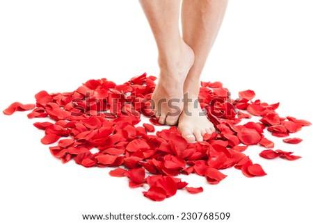Female feet in scarlet rose petals - stock photo