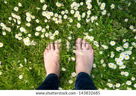 Female feet standing on green grass and white flowers - from above - stock photo