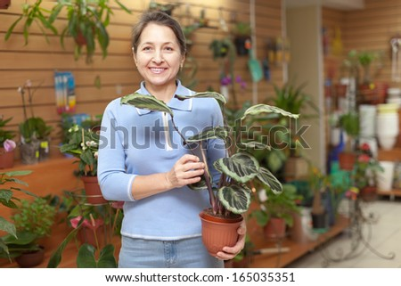 Female florist with  Calathea plant at flower store  - stock photo