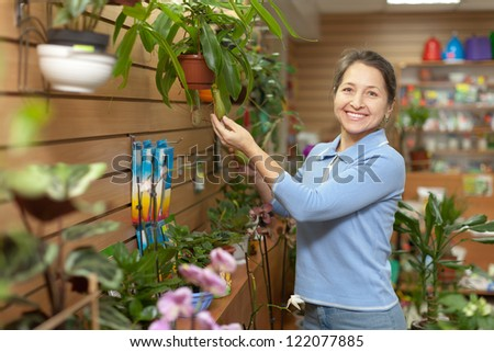 Female florist with Nepenthes plant at flower store - stock photo