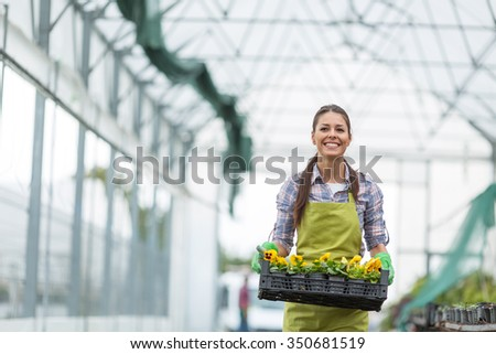Female florist working in her greenhouse,selecting flowers.Packing for transport. - stock photo