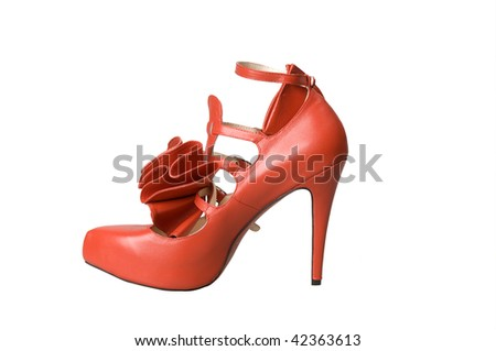 Female footwear isolated against