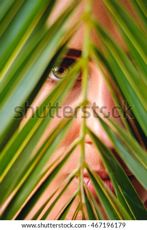 Female green eye looking through palm leaves. Summertime