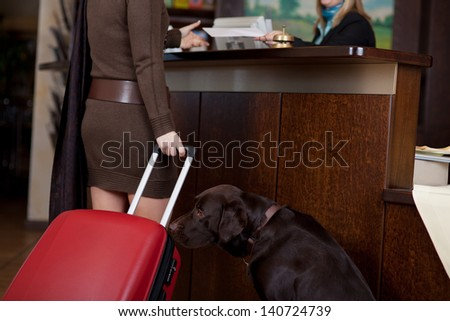 female guest with dog and baggage at hotel reception - stock photo