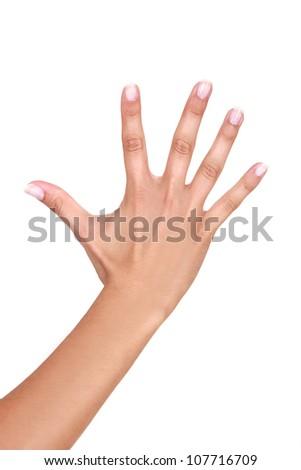 Female hand - stock photo