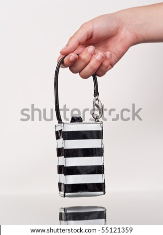 Female Hand Holding a Coin Bag - stock photo