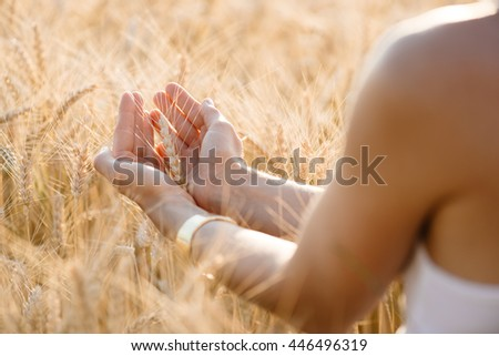 Female hand holding a golden wheat ear in the wheat field - stock photo