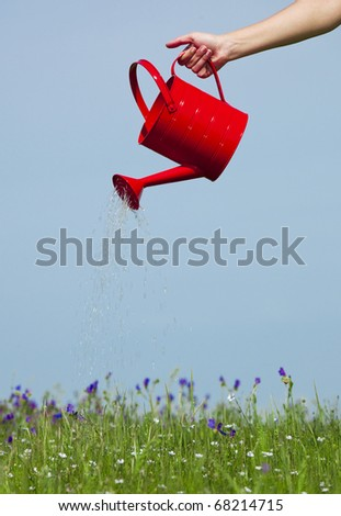 Female hand holding a water can and watering the flowers - stock photo