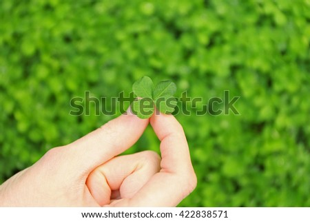 Female hand holding clover leaf, closeup - stock photo
