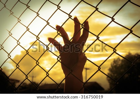 Female hand holding on chain link fence, Vintage tone style - stock photo