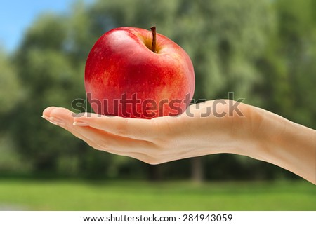 Female hand in closeup holding red apple - stock photo