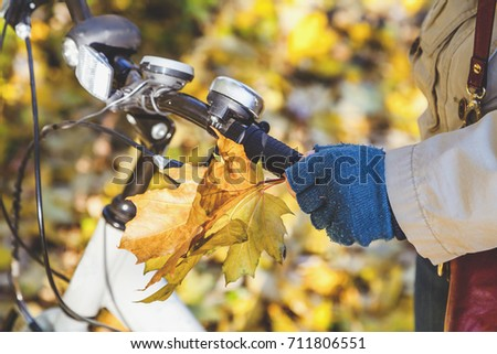 Female hand in knitted mittens with a bouquet of yellow maple leaves holding modern bicycle wheel