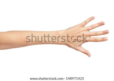Female hand isolated on white background - stock photo