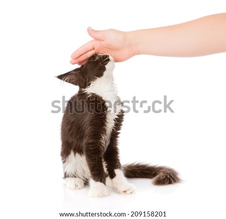 """""""pat_animal"""" Stock Photos, Royalty-Free Images & Vectors - Shutterstock"""
