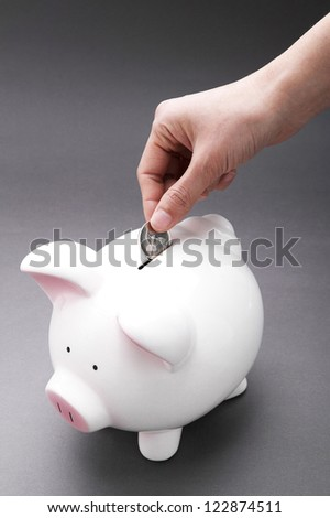 Female hand putting a coin in a piggy bank - stock photo