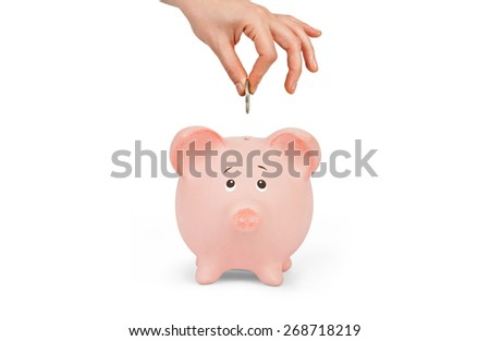 Female hand putting a coin into piggy bank  - stock photo