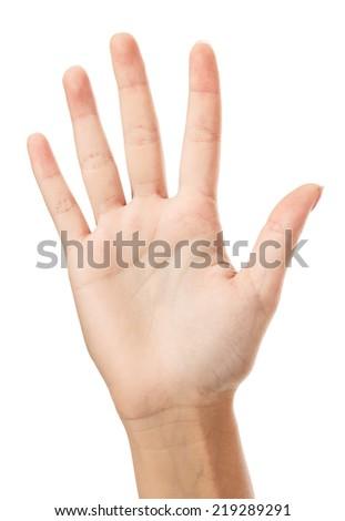 Female hand, white background, copyspace - stock photo