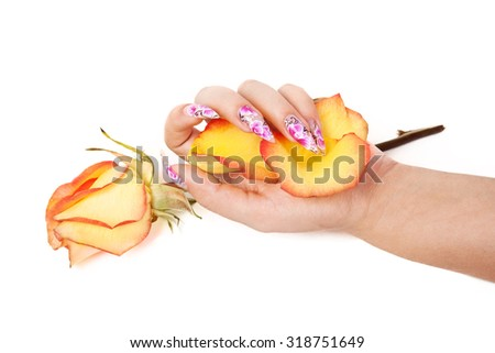 Female hand with beautiful nails, holds petals in hand, over a rose, on a white background - stock photo