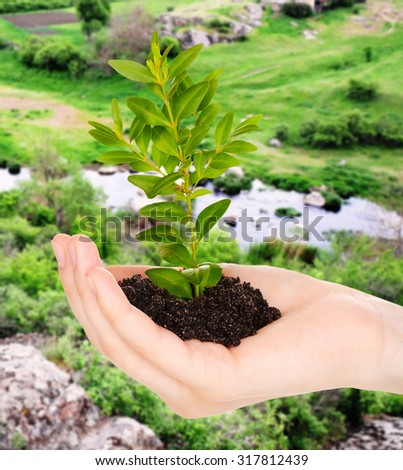 Female hand with soil and green plant on nature background - stock photo