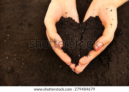 Female handful of soil in shape of heart, closeup - stock photo