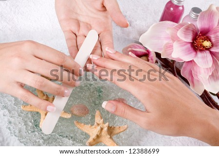 female hands at the manicure treatment - stock photo