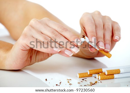 Female hands breaking a cigarette in half with a few cigarettes around waiting to be broken too - stock photo