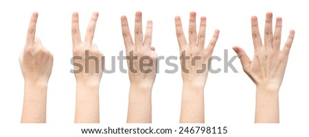 female hands counting from one to five isolated on white background