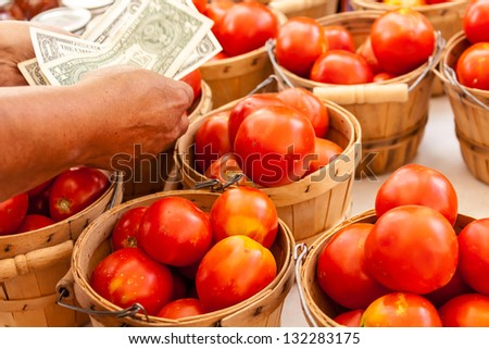 Female hands counting money over bushel baskets full of fresh organic red tomatoes at local farmers market - stock photo