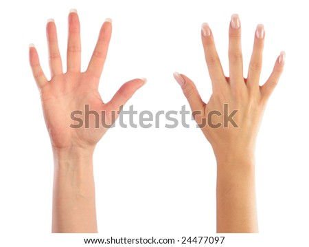 Female hands counting number 5 - stock photo