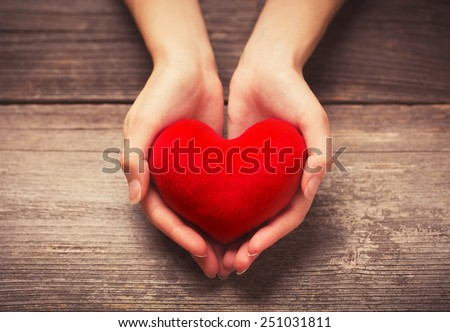 Female hands giving red heart - stock photo