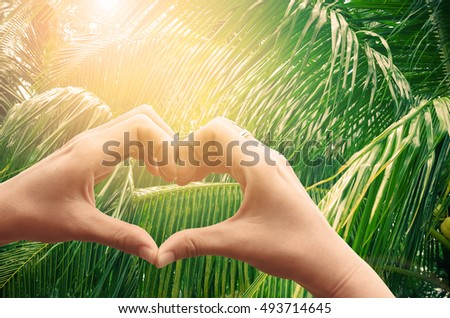 Female hands heart shape on tropical palm tree with sun light abstract background. Copy space of happy love and summer vacation concept. Vintage tone filter color style.