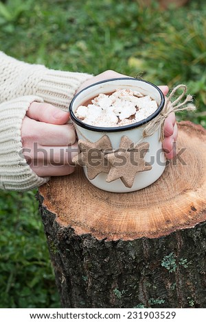 Female Hands Holding a Mug of Hot Chocolate with Meringues and Cinnamon Cookies on a Log - stock photo