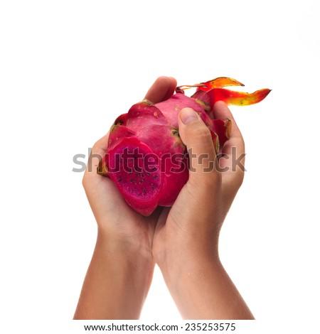 female hands holding dragon fruit isolated on white background - stock photo