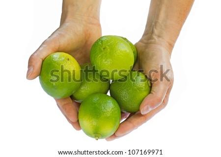 Female hands holding fresh limes - stock photo