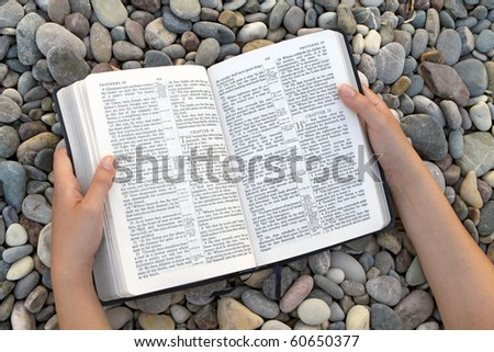 Female hands holding open Bible - stock photo