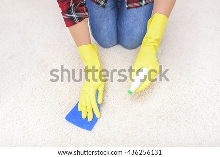 Female hands in gloves carpet clean the sponge and spray.