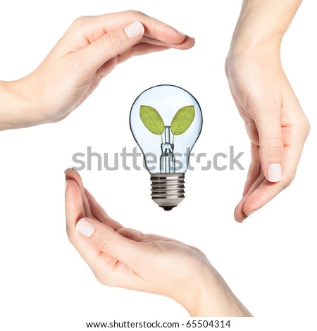 Female hands protecting a light bulb with leaves inside (recycling, environmental concept) - stock photo