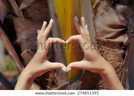 Female hands showing heart symbol on palm tree background - stock photo
