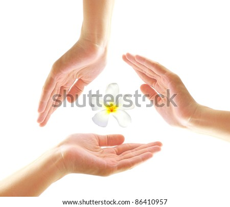 Female hands with frangipani in spa concept - stock photo