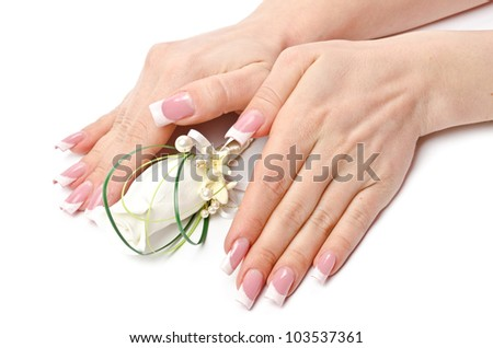 Female hands with perfect manicure and flowers - beauty treatment - stock photo