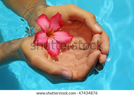 Female hands with red frangipani over blue ground of water - stock photo