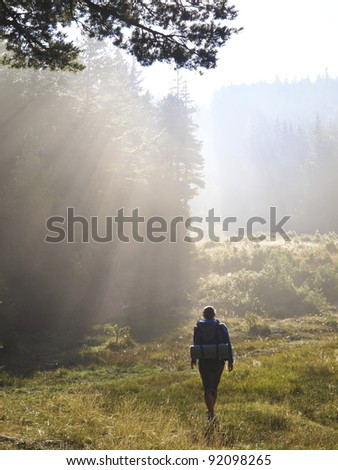 Female hiker walking under the rays of the morning sun in the mountain forest - stock photo