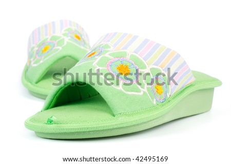 Female house slippers on a white background.