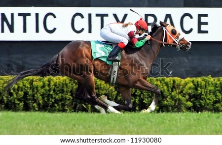 female jockey horse racing - stock photo