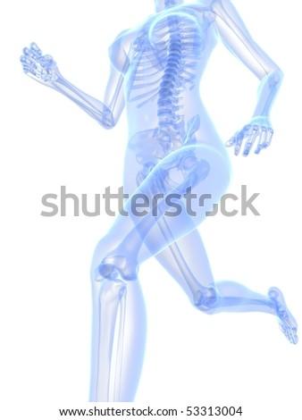 female jogger - x-ray - stock photo