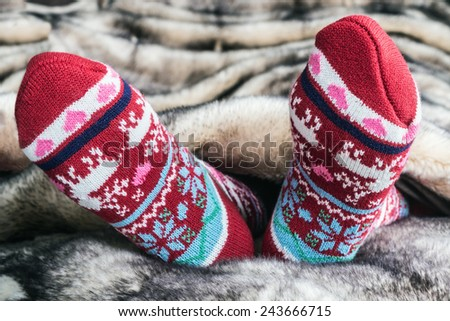 Female legs in Christmas socks under a blanket of fur - stock photo